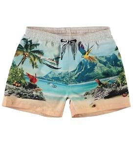 Плавательные шорты Niko